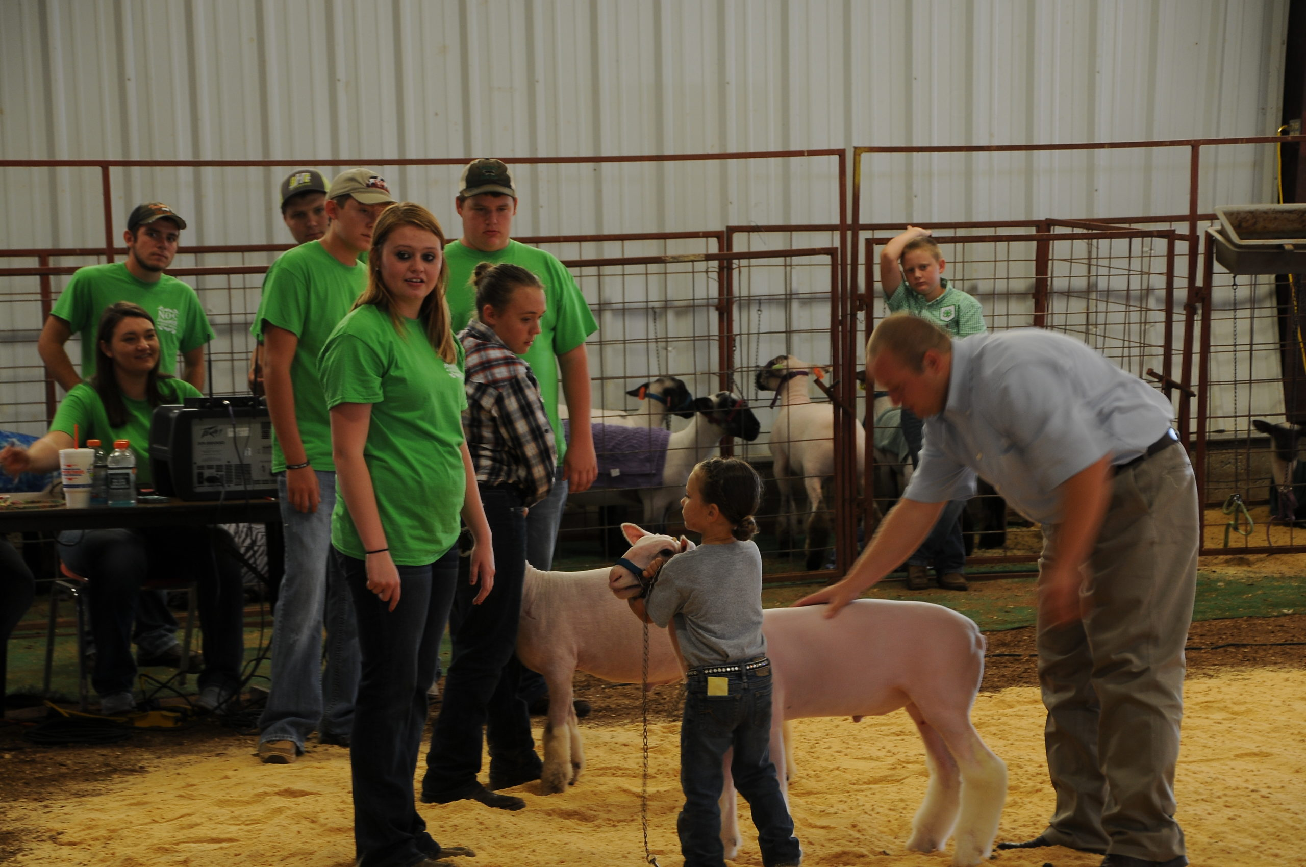 NOC Aggies working the Sheep Show